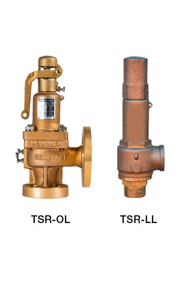 Safety Relief Valve image